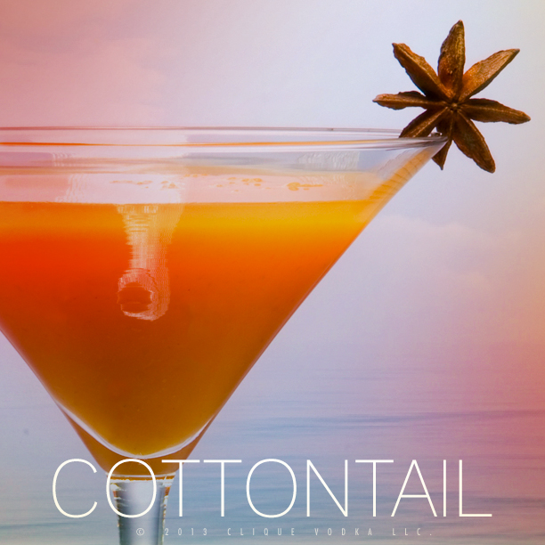 """Cottontail"" carrot juice and ginger cocktail!"