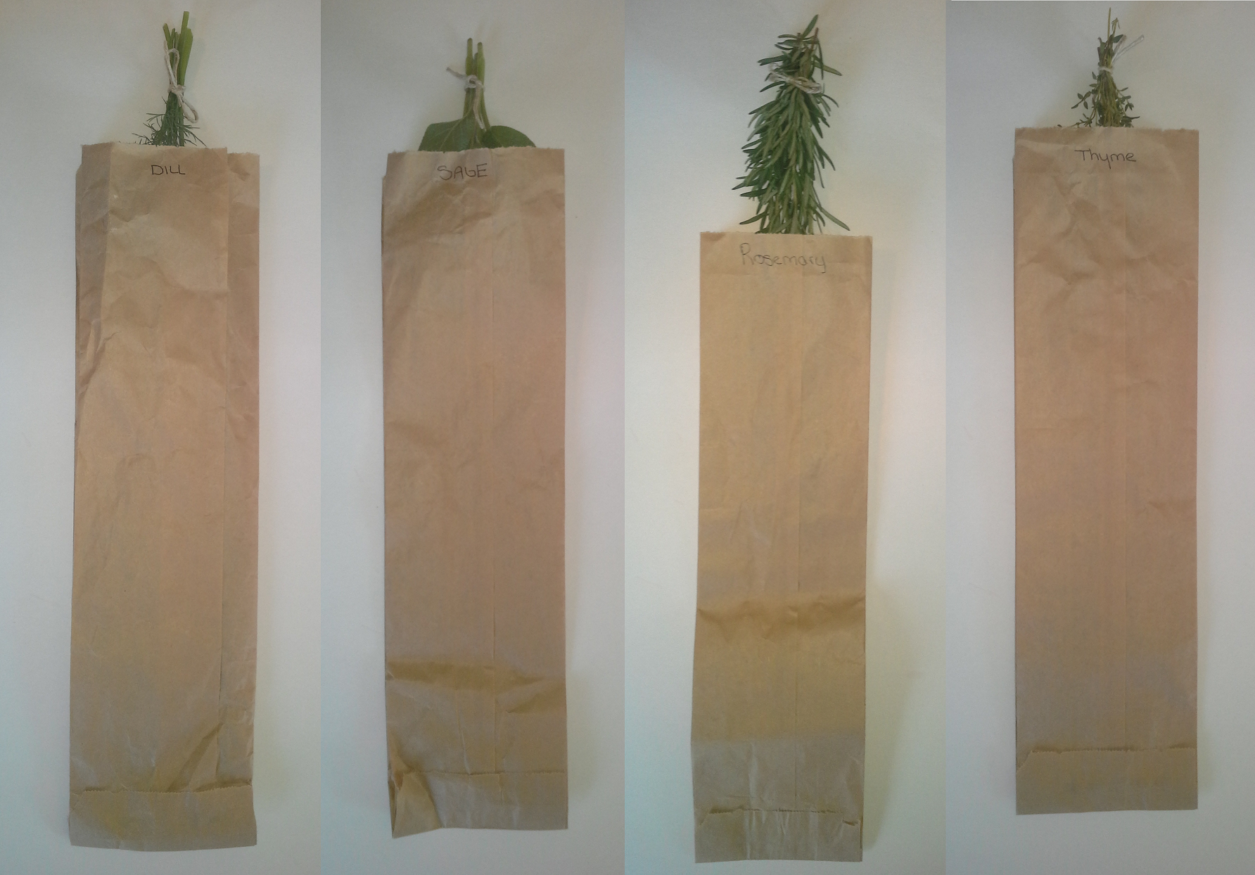 Dry herbs upside down in a paper bag