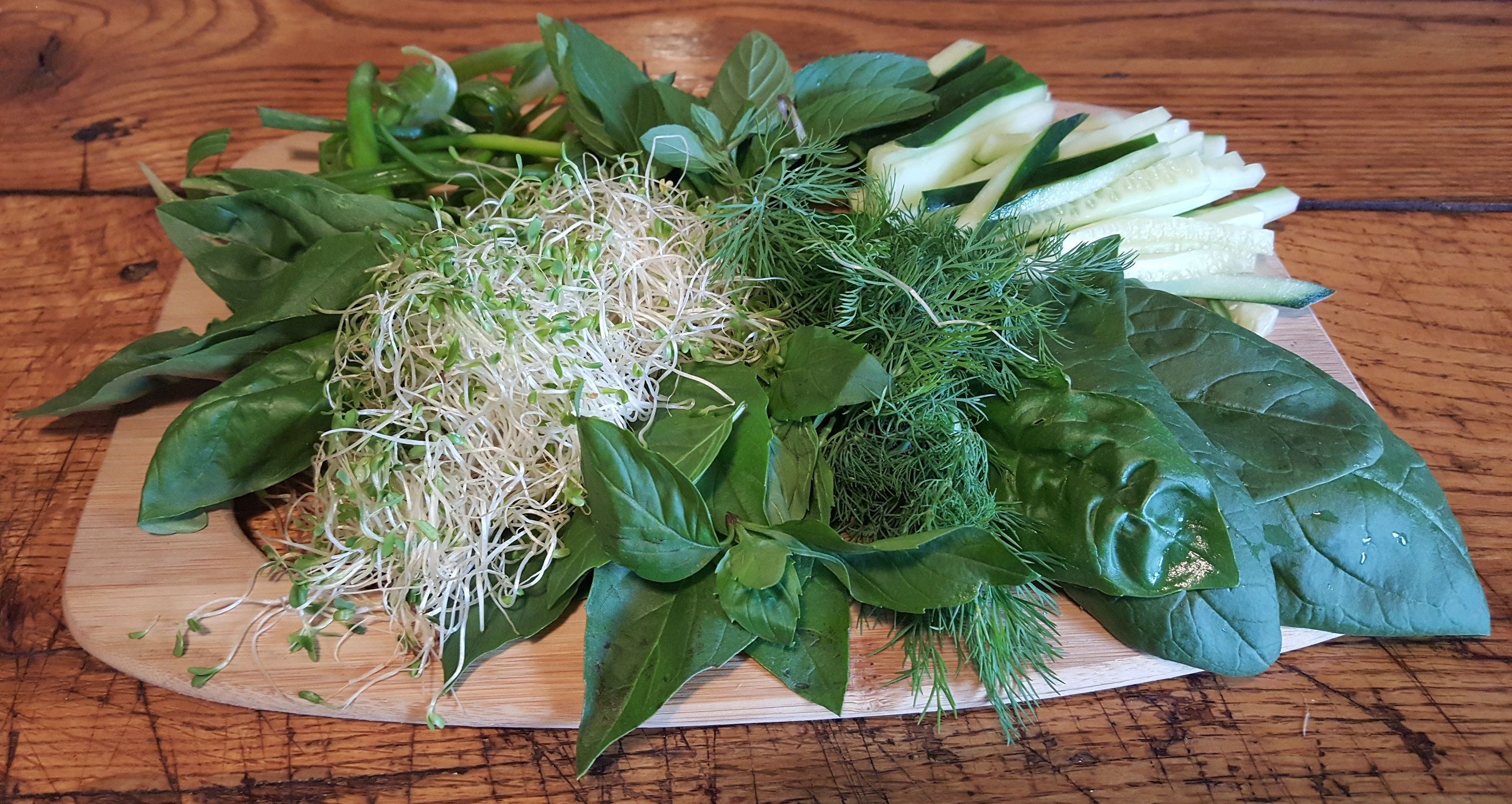 fresh-herbs-from-the-cocktail-garden